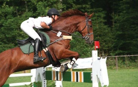 Professional horse on left of image jumping over a fence with its rider.