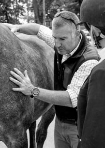 Shot of Tim Bradford on the right inspecting the side of a horse.